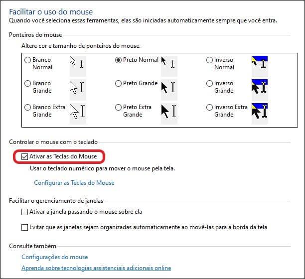 Screenshot da tela de configurações da Central de Facilidade de Acesso do Windows.