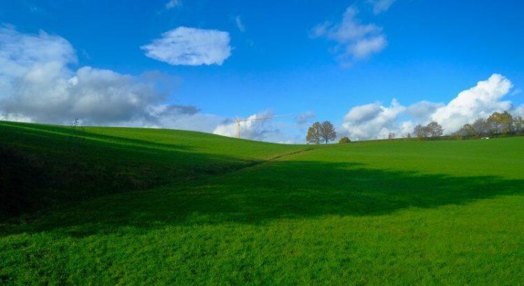 """Imagem inspirada em um plano de fundo clássico do Windows XP, """"Alegria""""."""